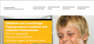 sap business one finanzprozesse