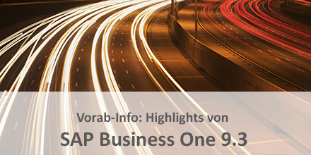SAP Business One 9.3