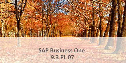 SAP Business One 9.3 pl 07