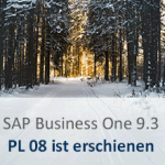 SAP Business One 9.3 PL08