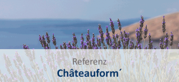 referenz sap business one cloud chateauform