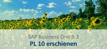 SAP Business One 9.3 pl 10