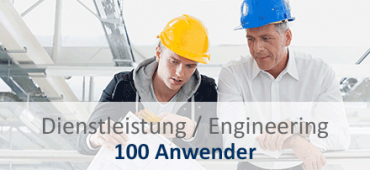 SAP Business One - Dienstleistung - Engineering