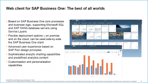 SAP Business One -web-client-10